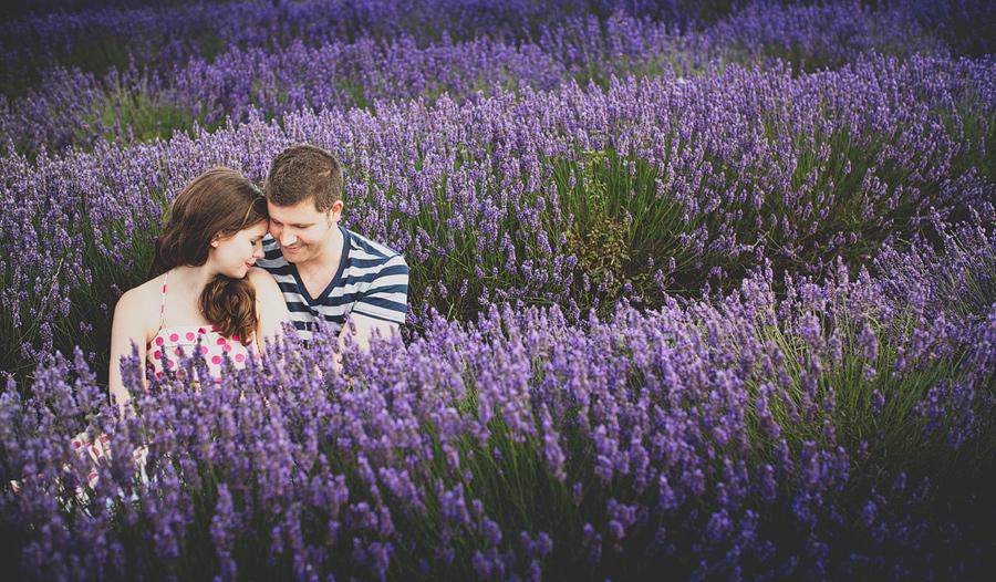 lavender-photos-harriet-tim-007