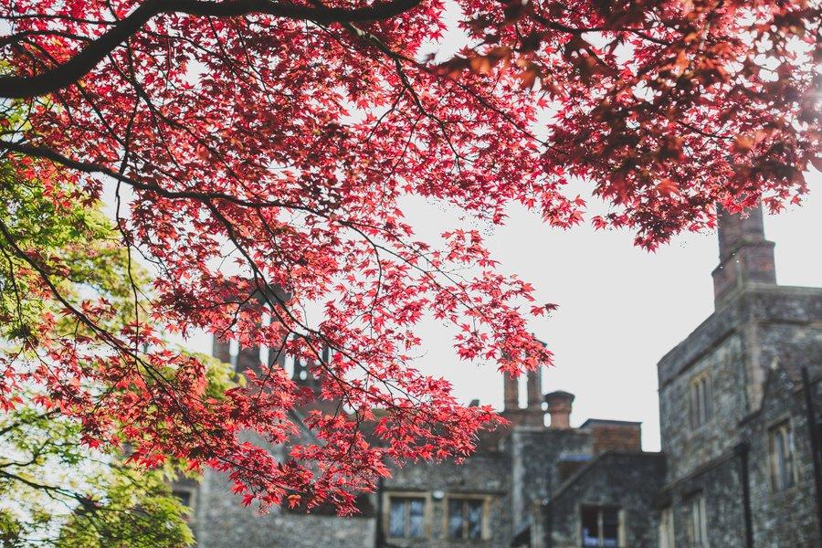 Eastwell-Manor-Wedding-Photographer-058